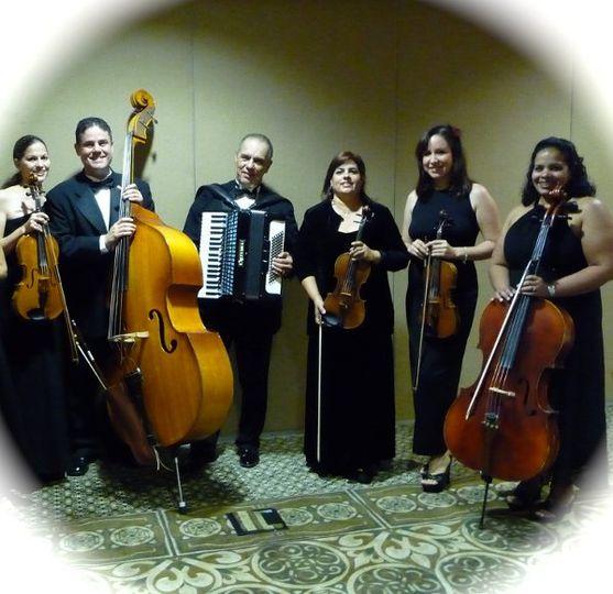 Violines Frenesi - Exravaganza