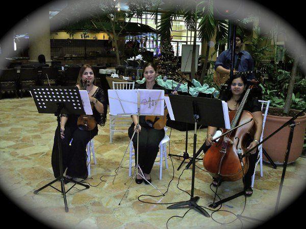 Frenesi Trio