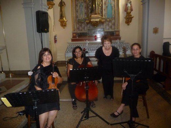 ViolinesFrenesi