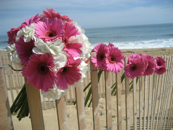 Beautiful hot pink gerbera daisies and white hydrangea make a beautiful beach bouquet
