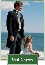 Tmx 1233855935296 BlackCutaway Thumb Claremont wedding dress