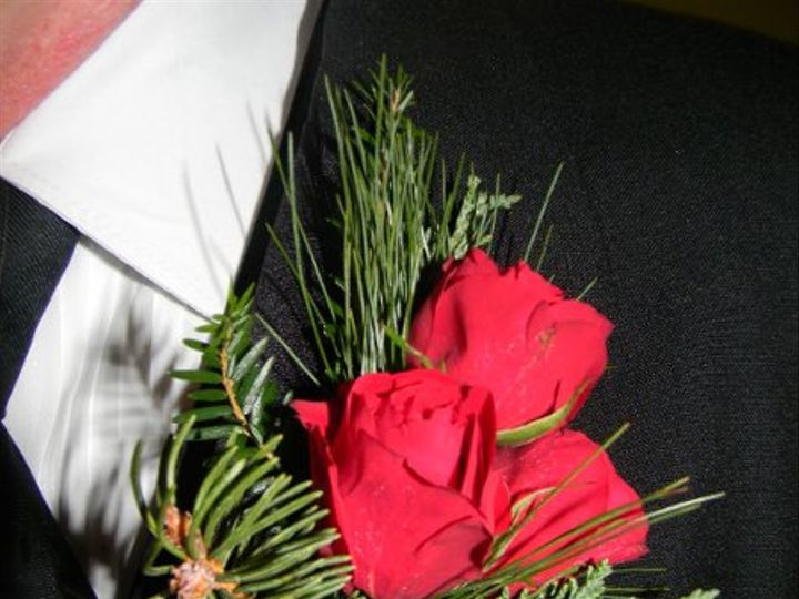 Tmx 1328546599623 DSCN11752 Alexandria wedding florist
