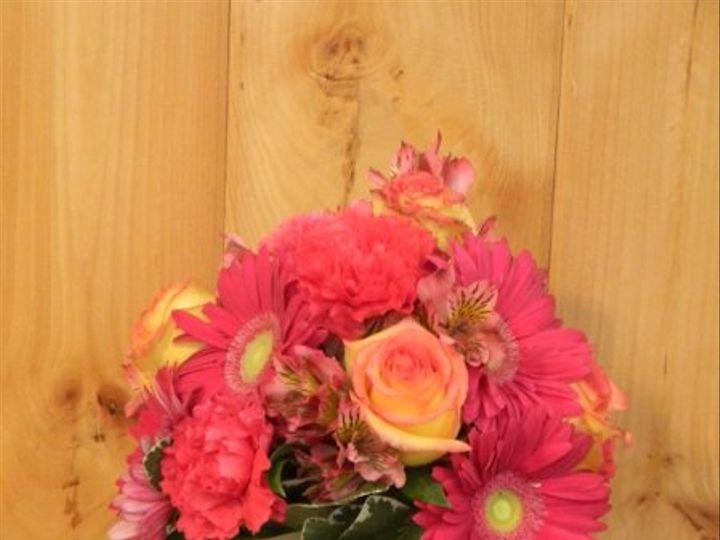 Tmx 1328547336768 DSCN0697 Alexandria wedding florist