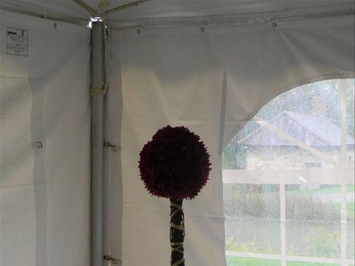 Tmx 1328548370821 DSCN1016 Alexandria wedding florist