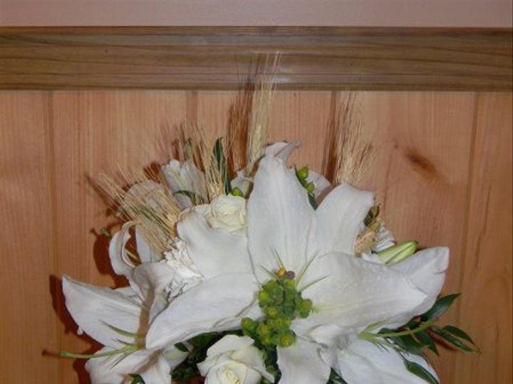 Tmx 1328549390499 DSCN1000 Alexandria wedding florist