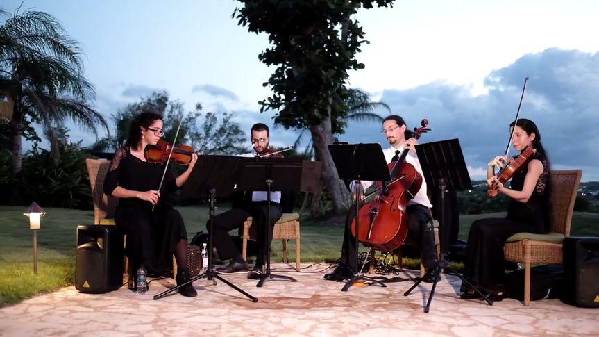 String Quartet @ Royal Isabela