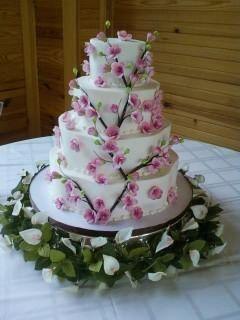 Tmx 1340330584906 301 Elizabethtown wedding cake