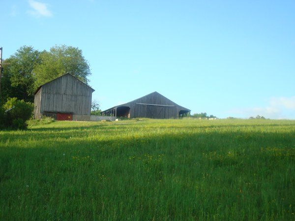 Our barn overlooking 130 acres of country.