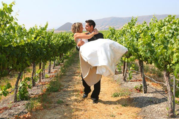 Edna Valley Vineyard bride & groom in vineyard