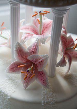 Tmx 1309443056929 StargazerClose Elkridge wedding cake