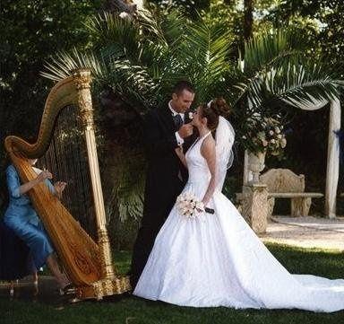 Tmx 1253892125232 Harpist Tampa, FL wedding dj