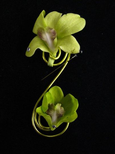 Lime Green Dendrobium Orchid boutonniere