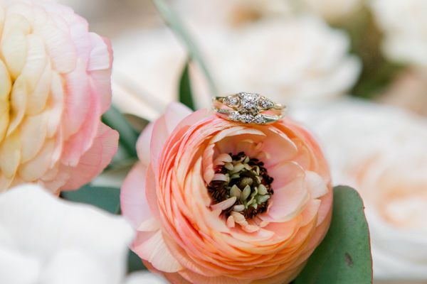 Antique ring on peach ranunculus by fargo + fergus falls wedding photographer two birds photography...