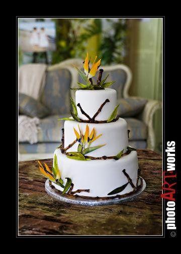 Tmx 1231180736545 WT8I4169 Titusville wedding cake