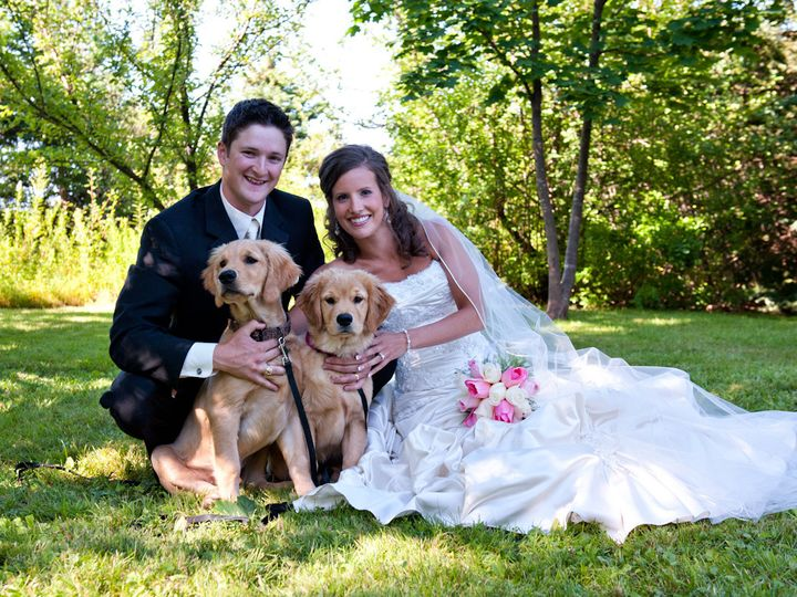 Tmx 1380518774297 Dogs At The Wedding Yountville wedding officiant