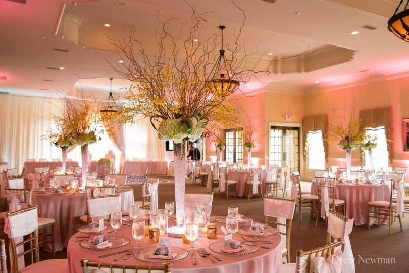 Elegant Chairs & Linens