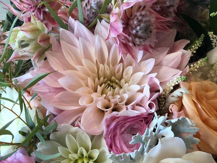 Tmx 36792559 2100349740225076 1323723549285810176 N 51 1005410 North Conway, NH wedding florist