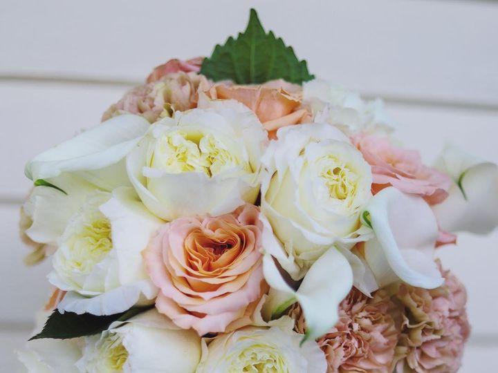 Tmx 44312045 717334175313749 6456373569822358543 N 51 1005410 North Conway, NH wedding florist