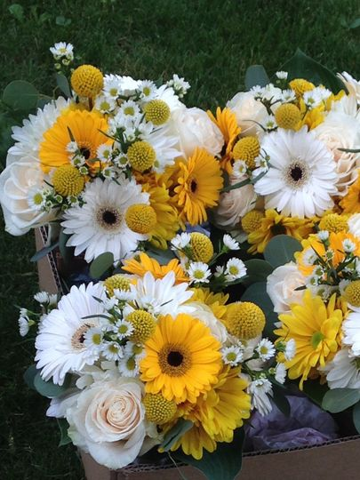 Happy whites and yellows, gerbers and roses with crespedia and monte casino bridesmaids bouquets