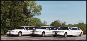 Tmx 1331767530154 3limo Norton wedding transportation