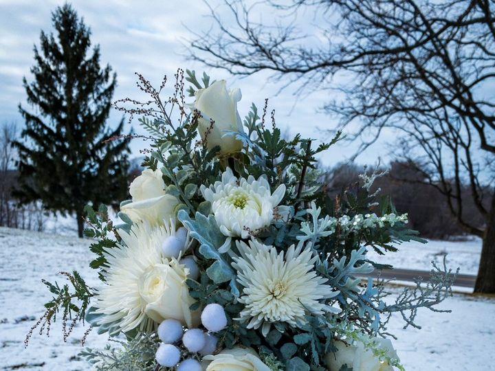 Tmx Img 1923 51 928510 160927434281394 Palmyra, WI wedding florist