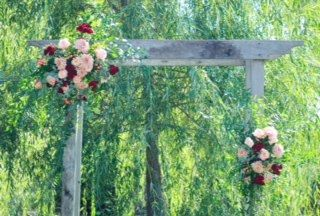 Tmx Img 4980 51 928510 160151437635900 Palmyra, WI wedding florist