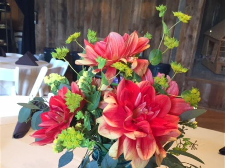 Tmx Img 6552 51 928510 Palmyra, Wisconsin wedding florist