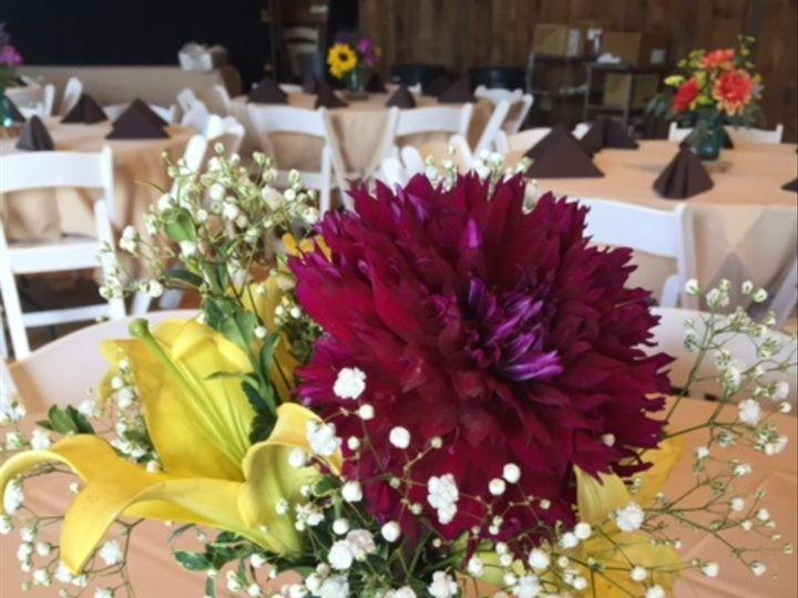 Tmx Img 6553 51 928510 Palmyra, Wisconsin wedding florist