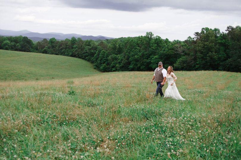Stroll through the meadow