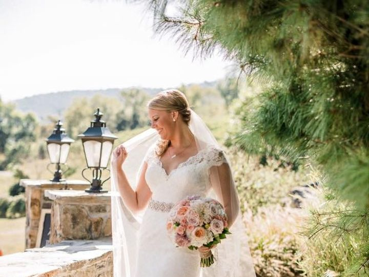 Tmx 1452114163174 Brittany Finch Augusta Jones Anita Virginia Beach, VA wedding dress