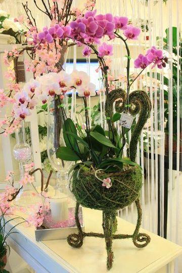 arrangement03152010157