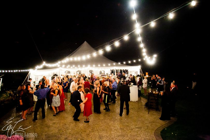 Live music and DJ Services