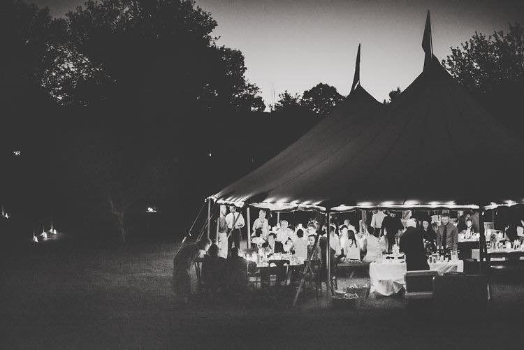 Backyard summer night.
