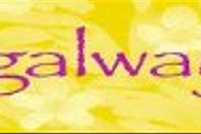 Springalways Inc Fresh Cut Flowers and Bouquets