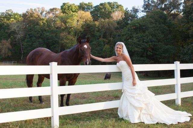 Bride petting a horse