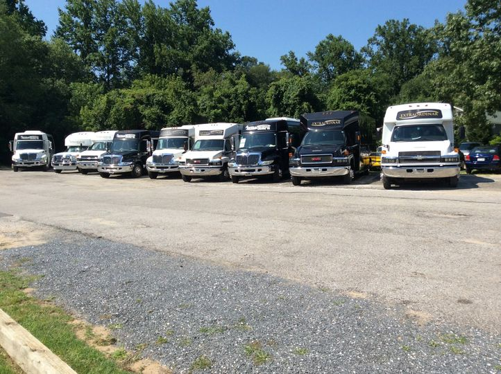 Group shot of Buses