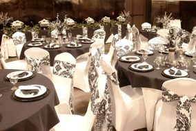 DecorCetera - Orlando Chair Covers