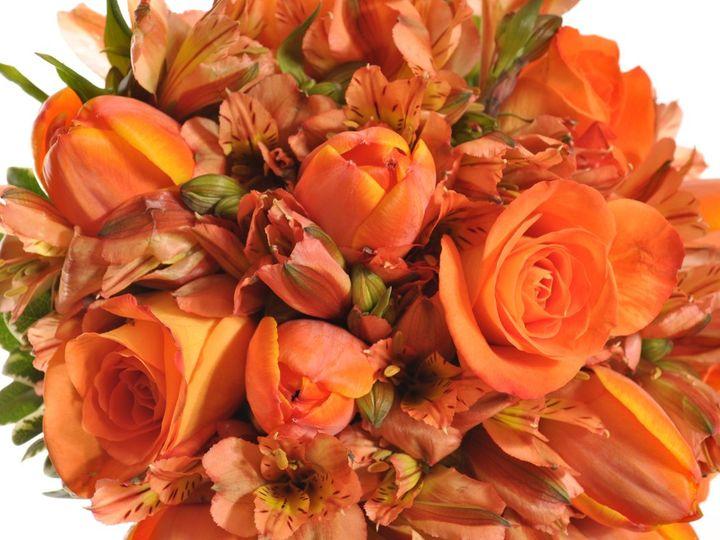 Tmx 1361373125334 Closeuprenee Milford wedding florist