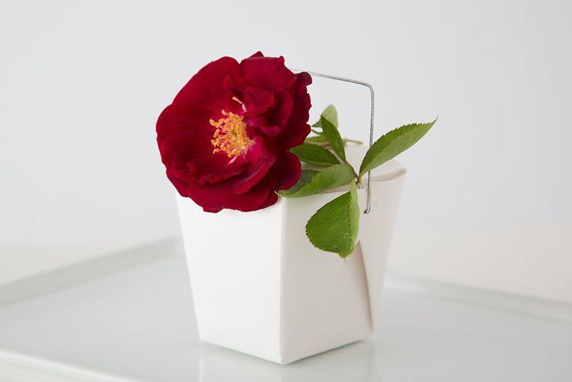 RedflowerCornerShot