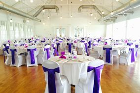 Ambiance Designers - Chair Covers