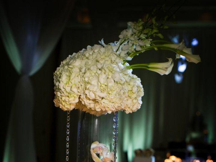 Tmx 1348756650803 IMG4873 Tampa, FL wedding venue