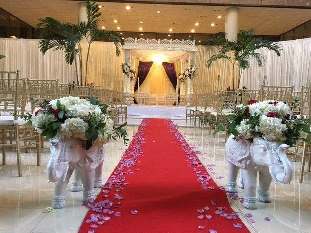 Tmx Img 8431 51 179020 158715545343480 Tampa, FL wedding venue