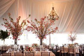 Petals Floral and Party Design