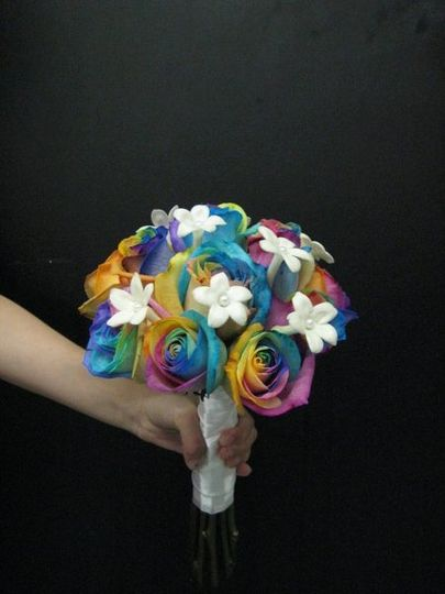 Rainbow roses from Holland