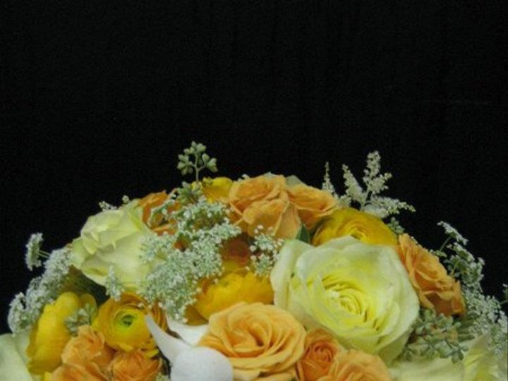 Tmx 1320949528577 29604428450968490164713610915640836811258712117315045n Bayville wedding florist