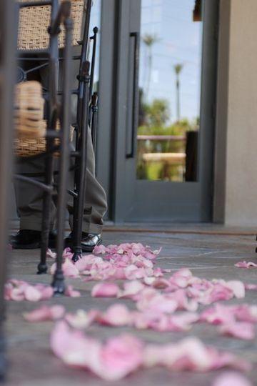 Pink rose petals on the floor