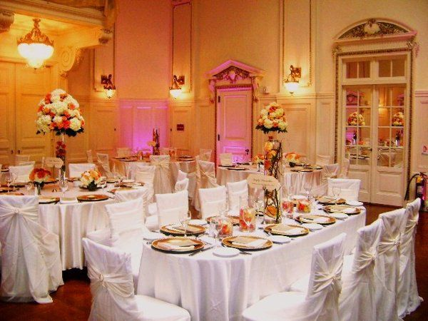Expression linen and events event rentals queens ny weddingwire 800x800 1295396311516 dsc03439 junglespirit Image collections
