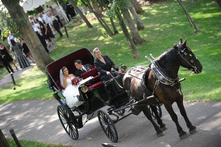 Couple in the carriage