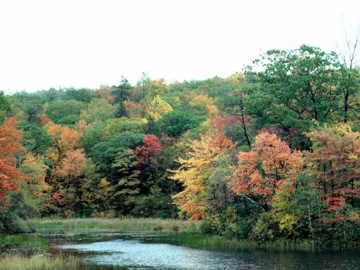 Tmx 1419010685012 Fall Lake Galena wedding venue