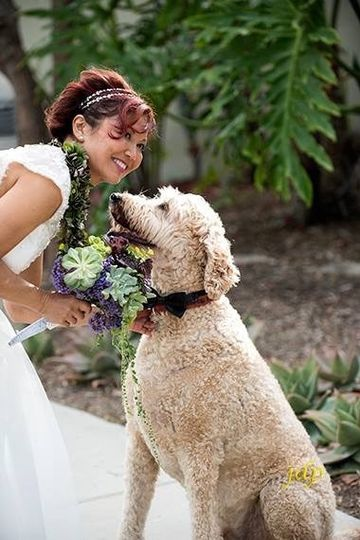 Bride with a dog